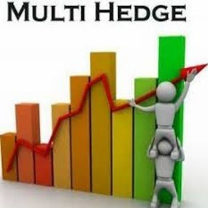 Multi hadge profit